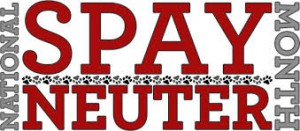 national spay and neuter month